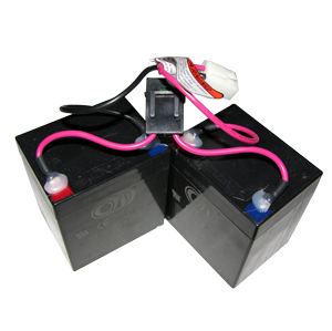 Razor Crazy Cart Battery (2x12v)